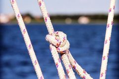 Experiences: Mini Experience: Tie a bowline knot like a pro!