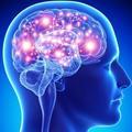 Experiences: Appreciating my Brain