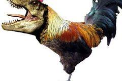 Experiences: Dinosaur Odyssey