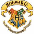 Experiences: Sorting Hat: A Harry Potter Experience