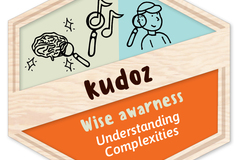 Badges: Wise Awareness: Understanding Complexities
