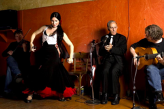 Experiences: Intro to Flamenco dance and music
