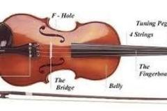 Experiences: Music Theory and Violin