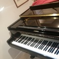 Experiences: Try playing a melody on the piano